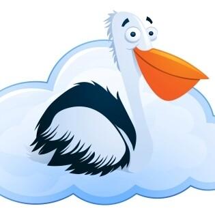 Cloud Pelican