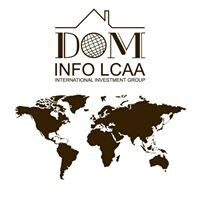 DOM INFO INVESTMENT Consulting Group