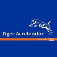 台荷加速器TigerAccelerator