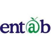 Entab Infotech P Ltd
