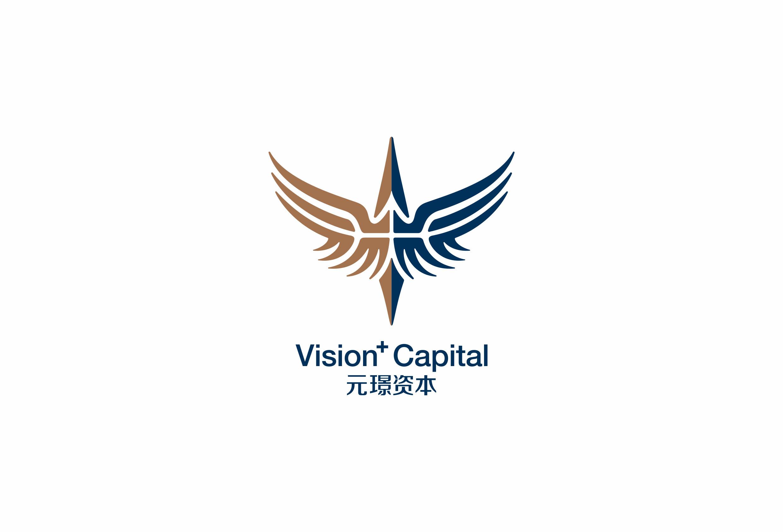 Vision Plus Capital