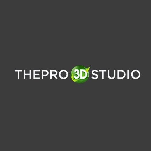 ThePro3DStudio