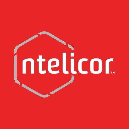 IT Staffing Companies in Dallas - Ntelicor