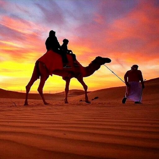 Arabian Desert Tours & Safari L.L.C.