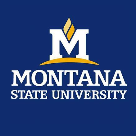 #MontanaState