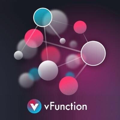 vFunction