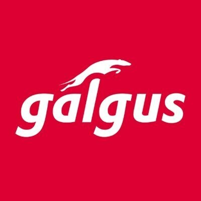 Galgus. Maximizing Wireless Performance