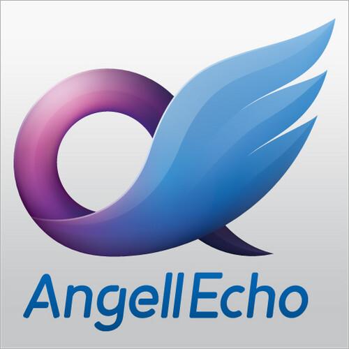 Shanghai AngellEcho Network