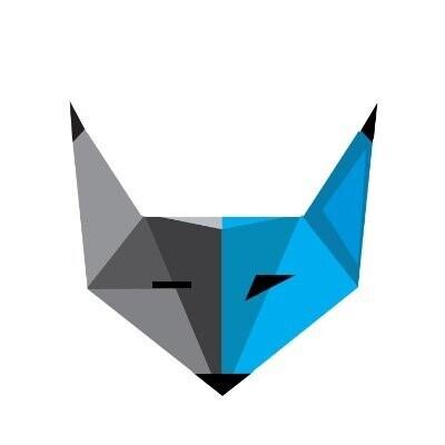 Blue Fox Technology