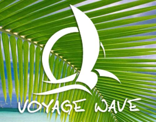 voyagewave.com