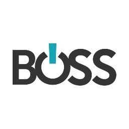 Boss Controls