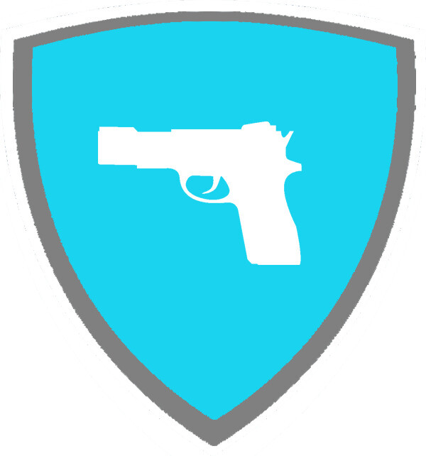 Smart Gun Systems