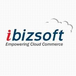 iBizSoft Inc