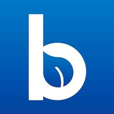 Blueleaf Advisor