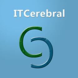 ITCerebral