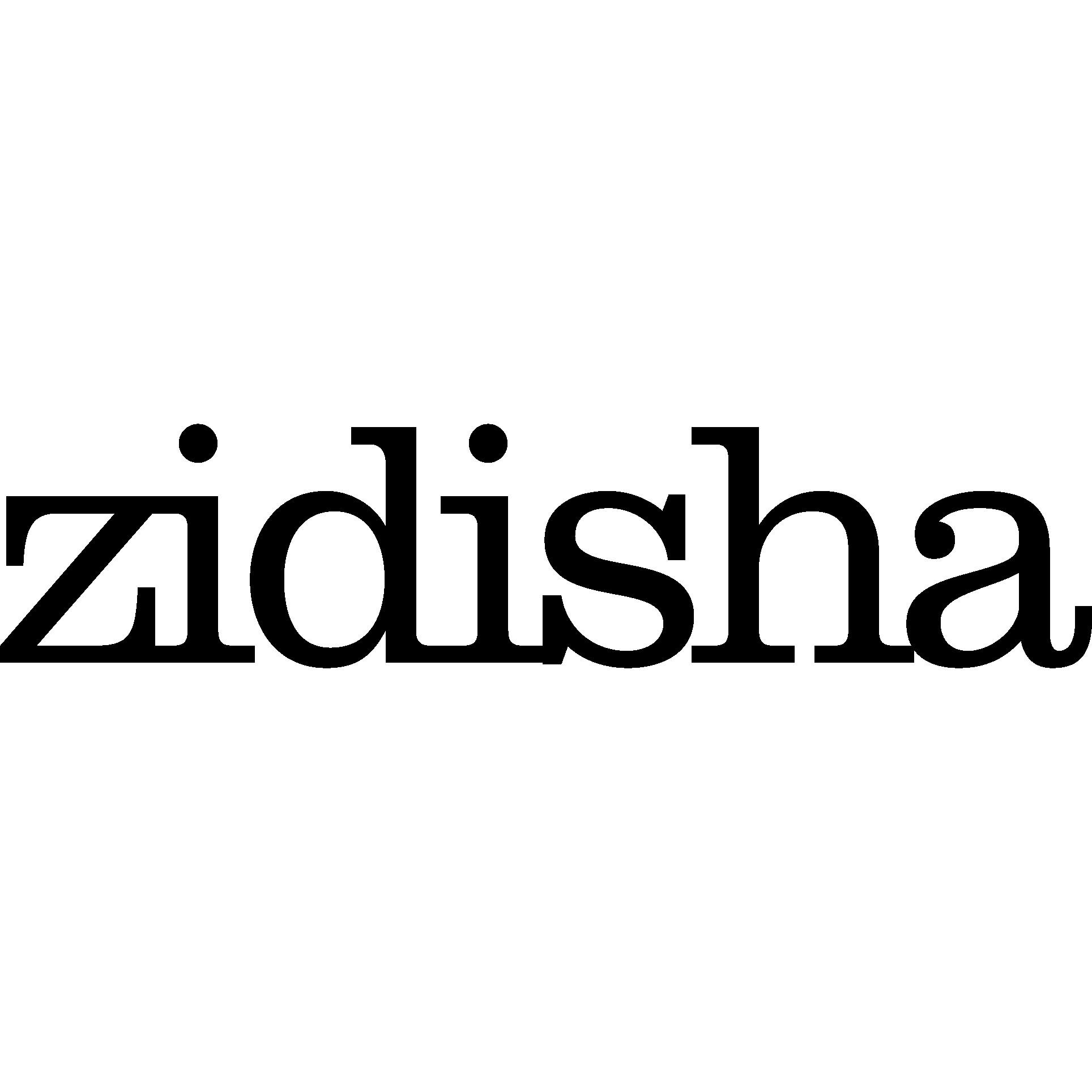 Zidisha Inc.