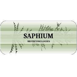 Saphium