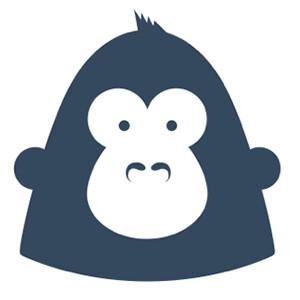 GorillaStack ☁
