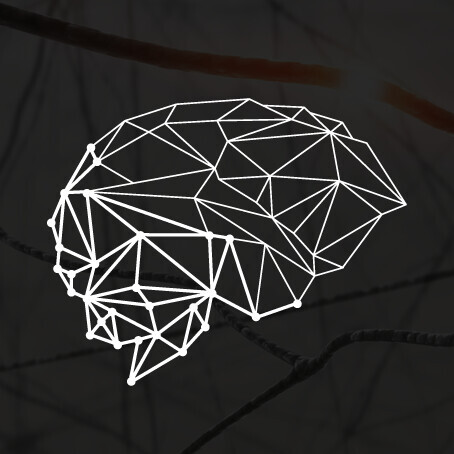 Virtual Neurosc Lab