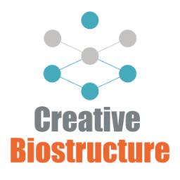 CreativeBiostructure