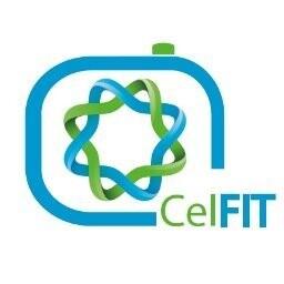 CelFIT