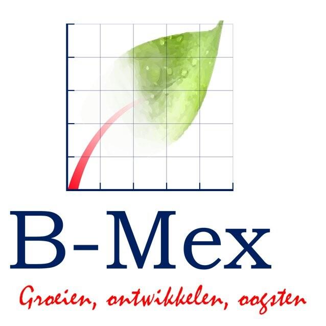 B-Mex