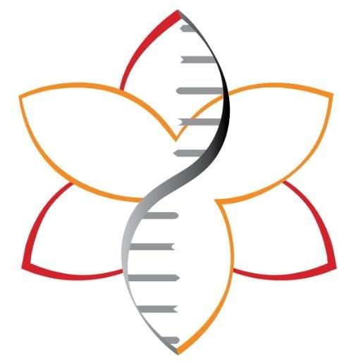 Amaryllis Nucleics