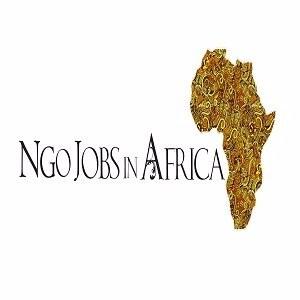 Ngojobsinafrica
