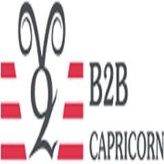 B2B Capricorn