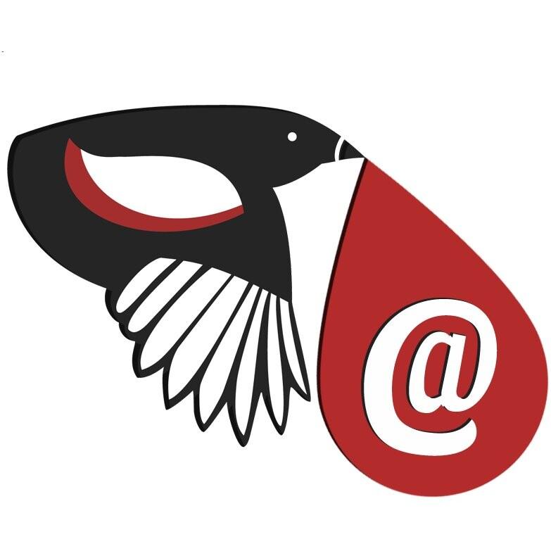 EmailMagpie