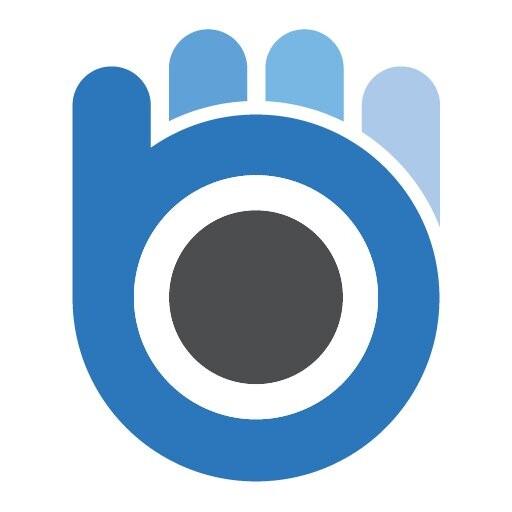 Bluewrist Inc.