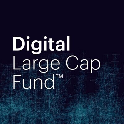 Digital Large Cap Fund (DCG Fund)