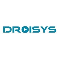 Droisys, Inc.